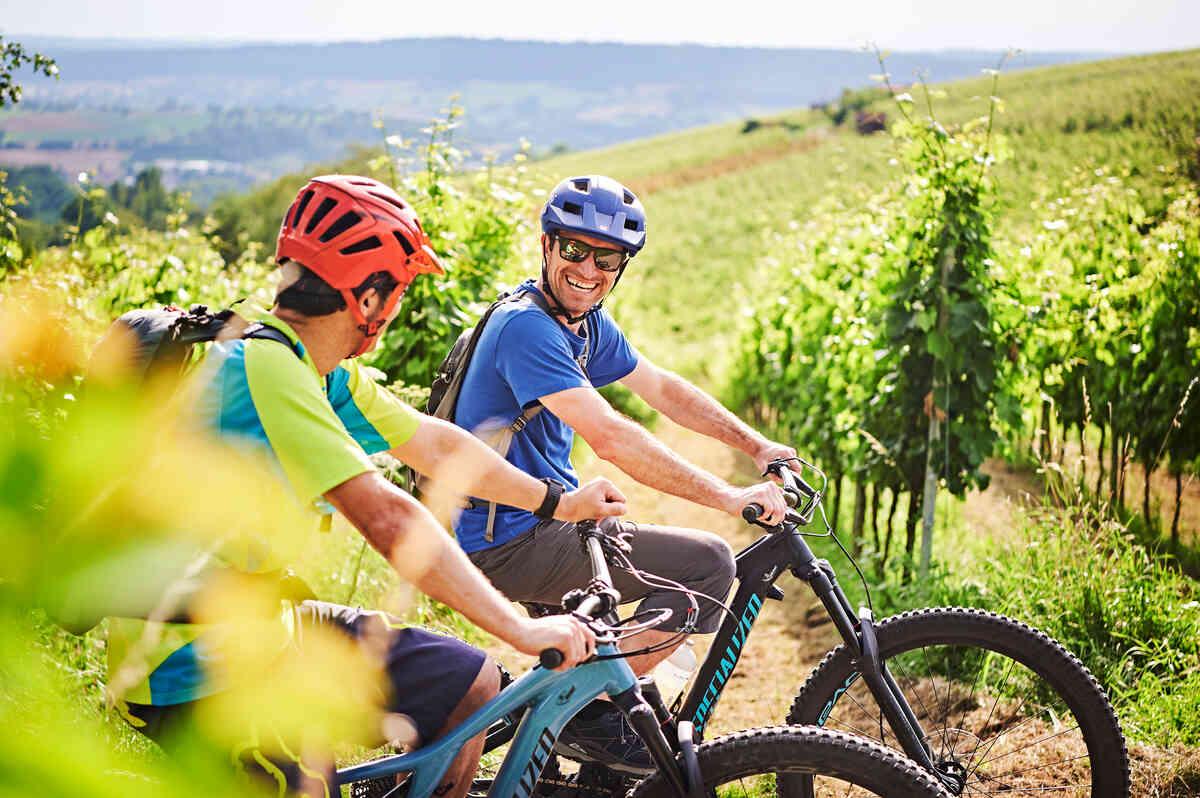 Fahrradtour Weinberg